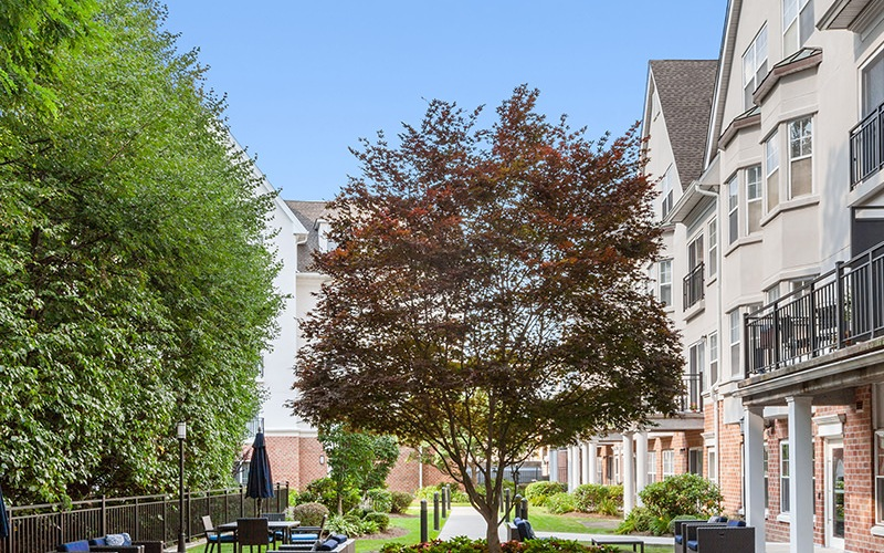 Spacious courtyard with ample seating